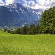 BioParadies_SalzburgerLand_Sommerau_9